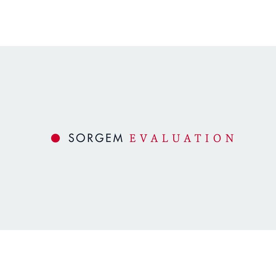the Sorgem logo.