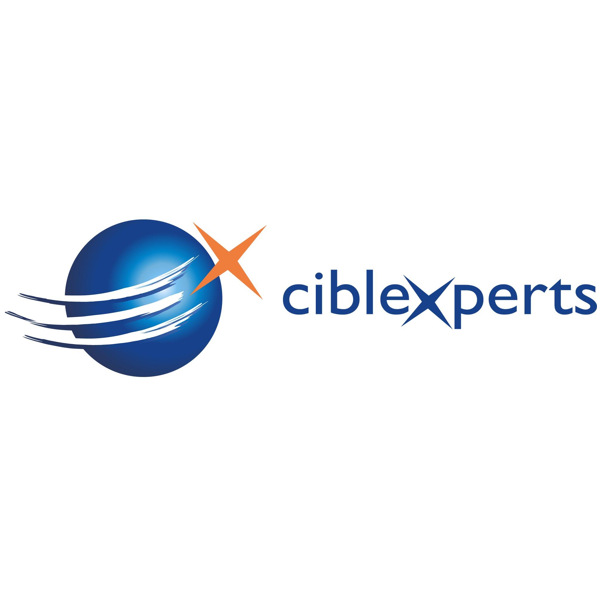 the Ciblexperts logo.