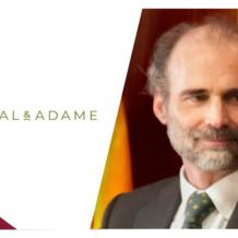Madrid-headquartered white collar crime boutique Del Rosal & Adame has recruited Iñigo Segrelles de Arenaza, a criminal law professor at Universidad Complutense de Madrid, as a partner.