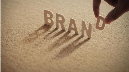 A brand is a primarily mental conception helping consumers distinguish one company from another. This intangible value is fundamental for the sustainability of a company's business, as many factors for success gravitate around it: the company's reputation, image, ethics, know-how, the trust placed in it by customers, etc. In a world of globalization and social networks, reputation crises travel faster and further than ever before, and companies often have to redouble their efforts to maintain their pristine brand image.
