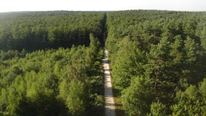 De la gestion et l'exploitation de la forêt jusqu'à la mise sur le marché des produits issus de la transformation du bois, la filière forêt-bois réalise chaque année un chiffre d'affaires de soixante milliards d 'euros.