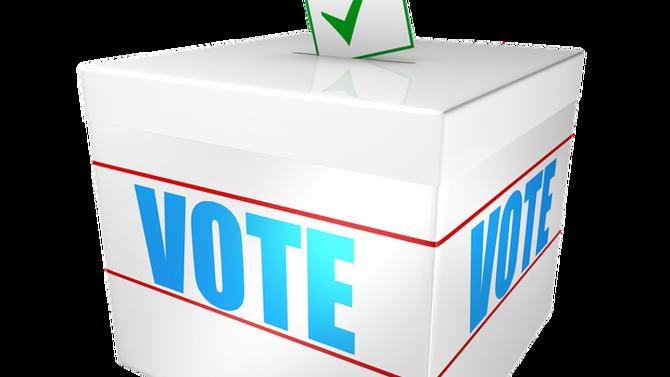 Si la mobilisation des électeurs de gauche à la primaire des Républicains est marginale, elle pourrait faire pencher la balance en cas de résultats serrés au premier tour.