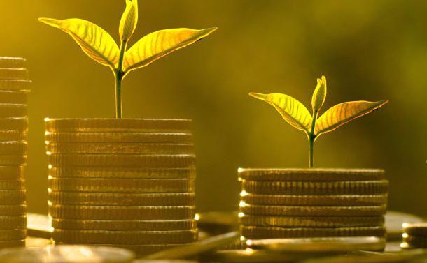 Selon le rapport annuel de Bain & Company, la concurrence accrue pour les cibles condamne les sociétés de gestion à définir leurs propres cadre de création de valeur.