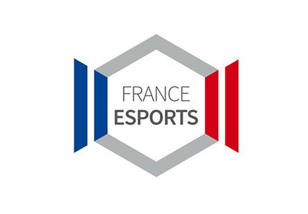 Après six mois de négociations, les décrets d'application de la loi sur la République numérique censée réguler les compétitions d'eSport et donner un statut aux professionnels du jeu vidéo inquiètent.