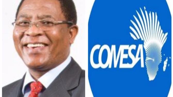 Le Marché commun de l'Afrique orientale et australe (Comesa) est le bloc régional le plus grand d'Afrique et comprend neuf institutions – dont une agence d'investissement régionale, une banque et un institut monétaire – , une cour de justice et des agences spécialisées. Le secrétaire général, Sindiso Ngwenya détaille les missions et la stratégie de l'organisation.