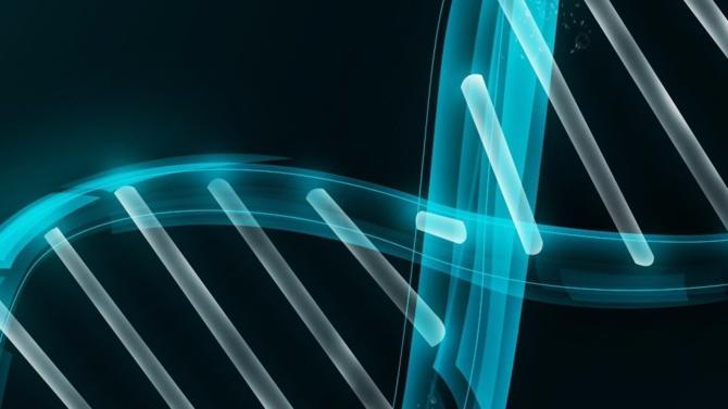 La FDA approuve pour la première fois une thérapie génique aux États-Unis. Ce traitement oncologique basé sur la modification génétique des cellules immunitaires des patients est développé et distribué par le laboratoire Novartis, premier à se positionner sur ce marché prometteur.