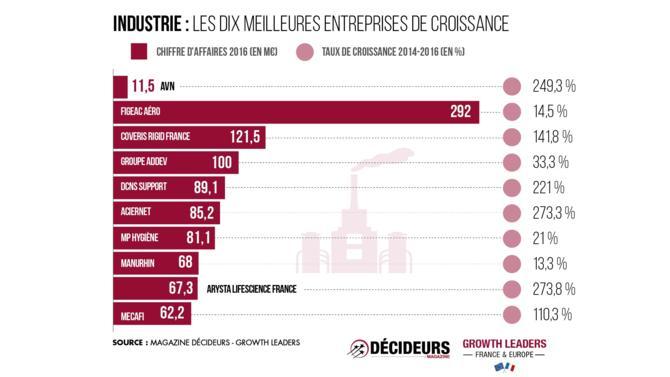 Avec quarante-huit sociétés présentes dans le classement, le secteur de l'industrie représente 6,5 % du chiffre d'affaires total. Son taux de croissance de 247,6 % est cohérent avec la moyenne de 276,1 %.