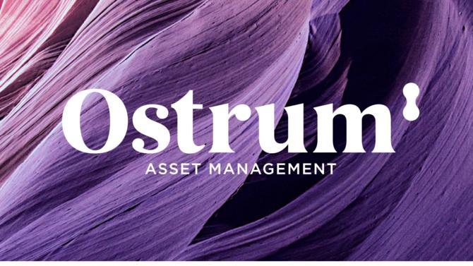 C'est à la suite de 30 ans d'expérience dans l'accompagnement des projets financiers de ses clients que Natixis Asset Management a décidé, à compter du 3 avril 2018 de changer de nom pour devenir Ostrum AM.