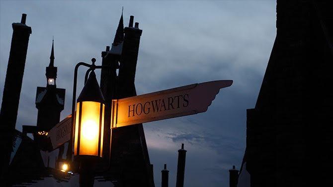 Juin 1997. Au rayon littérature jeunesse des librairies, le premier tome des aventures de Harry Potter, jeune sorcier binoclard et orphelin inventé par JK Rowling, fait son apparition. Vingt ans plus tard, la saga est devenue un best-seller mondial. Chacune de ses sorties en librairie ou dans les salles bat des records d'audience et son univers magique continue à fasciner bien au-delà  de son public d'origine. De quoi s'interroger, quelques semaines après la sortie du dernier opus, « Les crimes de Grindewald », sur les raisons qui ont transformé un livre pour enfant en véritable phénomène de société.
