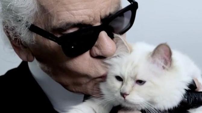 Le couturier désirait léguer une partie de son héritage à Choupette, son chat. Le droit en décidera autrement.