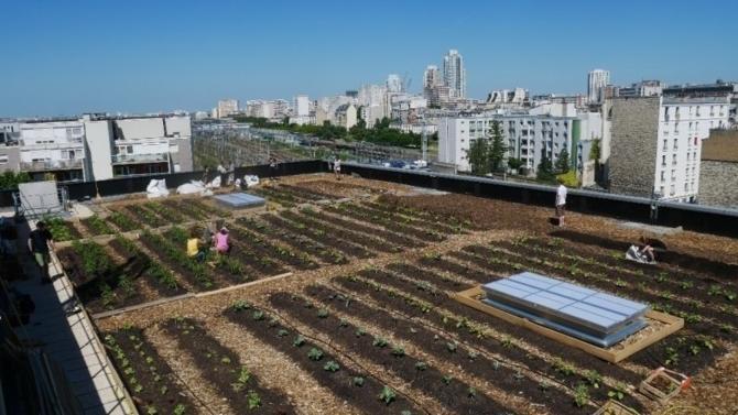 De plus en plus de projets d'aménagement et de renouvellement urbains incluent des propositions d'agriculture urbaine. Peut-on encore parler de phénomène de mode ? Quels acteurs en sont à l'origine ?  A quelles questions de fond sur la ville cette pratique renvoie-t-elle ? Éclairage.