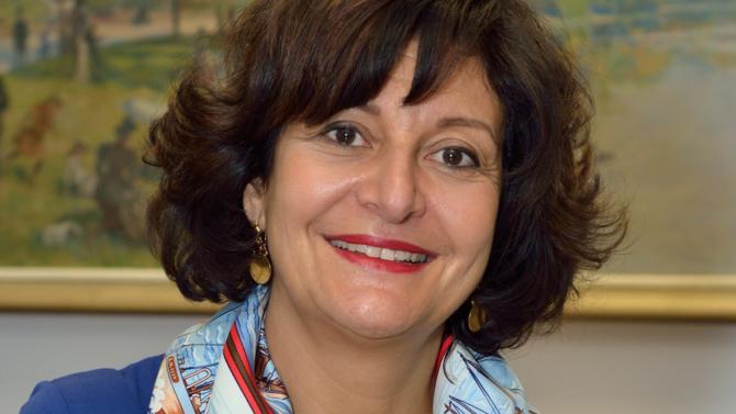 Neja Lanouar rejoint les services de la Mairie de Paris en 2002. Elle assure tour à tour des fonctions de maîtrise d'œuvre et de maîtrise d'ouvrage, puis prend la charge de projets de réformes au secrétariat général avant d'accepter le challenge de pilote de la DSI fin 2012.