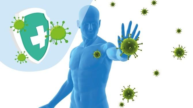 De nombreuses zones d'ombre restent à lever sur la question de l'immunité face au Covid-19, pour s'assurer notamment de la pertinence des stratégies vaccinales. Et en faire une arme efficace à long terme pour stopper définitivement la propagation du virus.