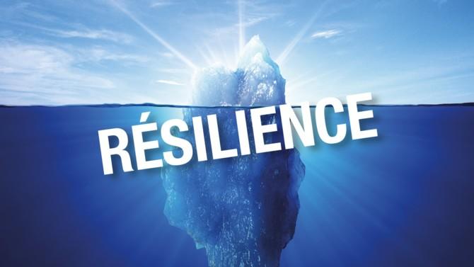 La résilience est un concept scientifique introduit en psychologie entre les années 1930 et 1945. Désormais, c'est auprès des entreprises qu'il est appelé à s'appliquer