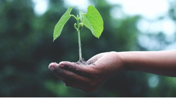 Ecofi Actions Croissance Euro a été renommé Ecofi Trajectoires Durable. Poursuivant sur sa lancé, ce fonds s'ancre vers la thématique du développement durable.
