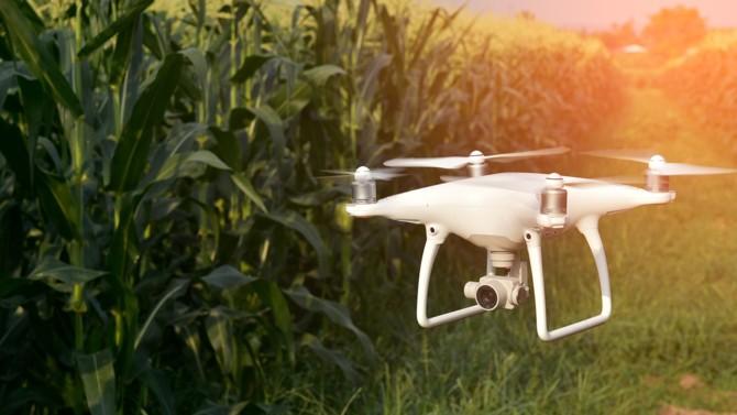 De la traite automatique au contrôle du cycle de vie des cultures via la blockchain, en passant par les tracteurs ultra-connectés, le numérique transforme l'agriculture. Il répond à de vraies problématiques, mais ne gagne en efficience qu'à diverses échelles.