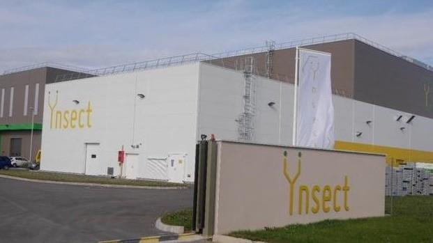 La start-up française spécialisée dans la production d'insectes a réalisé une nouvelle levée de fonds de 190 millions d'euros et se positionne plus que jamais comme le leader mondial du secteur.