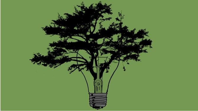 Aides publiques nocives à l'environnement, biochimie, la facture salée du risque climatique, 7 000 entreprises qui s'engagent pour la transition… Chaque semaine, Décideurs vous propose une synthèse de l'actualité environnementale.