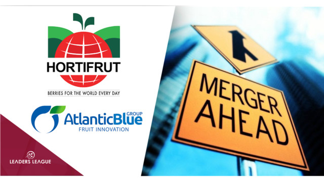 Chilean berry company Hortifrut acquires Spain's Atlantic Blue for $280m
