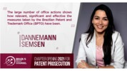 Dannemann Patent Pros
