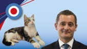 Communication de Gérald Darmanin : Chat le fait