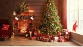 Noël, ces livres à mettre au pied du sapin