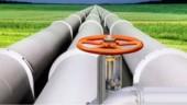 Total poursuit ses acquisitions dans le gaz renouvelable et rachète Fonroche Biogaz