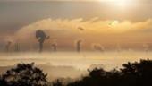 L'Ademedévoile son avis sur la neutralité carbone