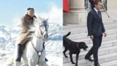 Comment les dirigeants politiques nous manipulent… avec des animaux !