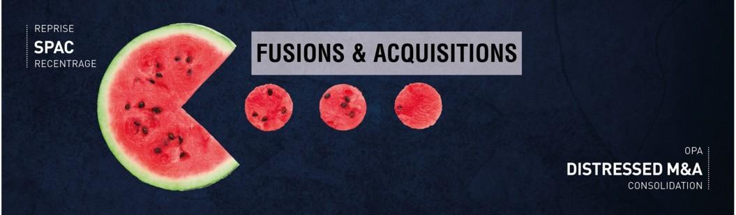 Retrouvez notre dossier issu du guide-annuaire Fusions & acquisitions 2020-2021